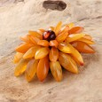 Chrysanthemum Flower Amber Brooch