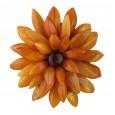Chrysanthemum Flower Amber Brooch